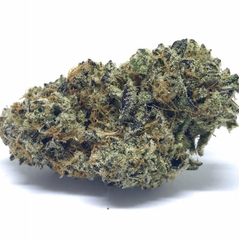 Clone Delivery Services Santa Rosa | Burning Ague – Clone